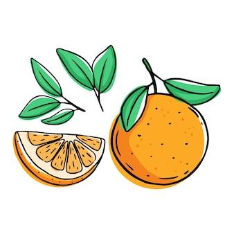 Conjunto de fruta laranja isolado no branco