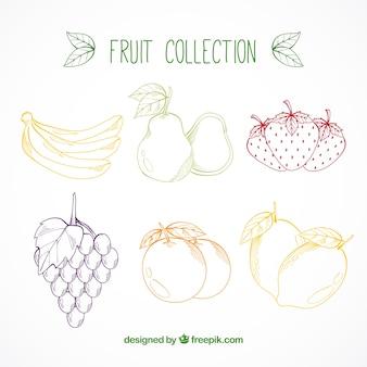 Conjunto de frutas coloridas desenhadas à mão