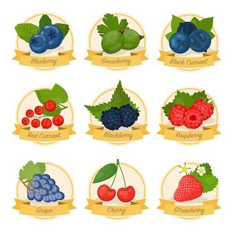 Conjunto de frutas de bagas com ilustrações de nomes morango mirtilo cereja framboesa