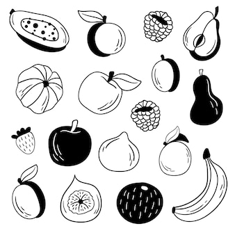 Conjunto de frutas de doodle de vetor. conjunto de frutas. ilustração vetorial