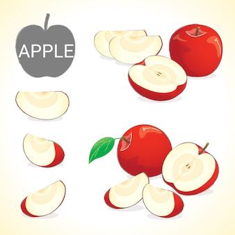Conjunto de frutas de maçã em vários estilos vector format