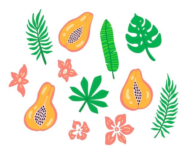 Conjunto de frutas de mamão com folhas tropicais de flores. logotipo tropical mamão com folha de palmeira