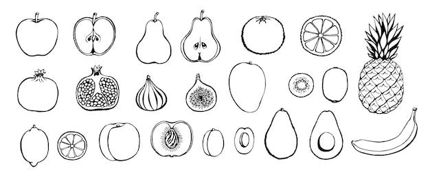 Conjunto de frutas de mão desenhada.