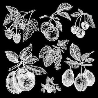 Conjunto de frutas e bagas giz branco na lousa preta
