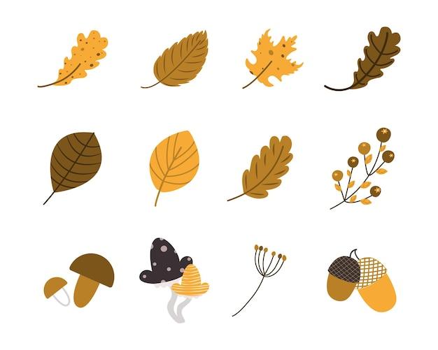 Conjunto de frutas e folhas de outono. coleção de 12 elementos diferentes. desenho universal para publicidade e produtos publicitários temáticos. ilustração vetorial desenhada à mão