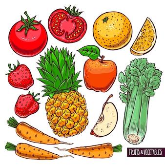 Conjunto de frutas e vegetais coloridos. ilustração desenhada à mão