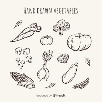 Conjunto de frutas e vegetais desenhado mão incolor
