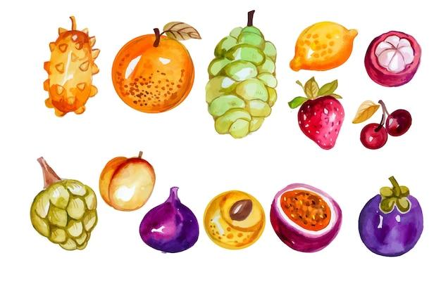 Conjunto de frutas em aquarela pintada à mão