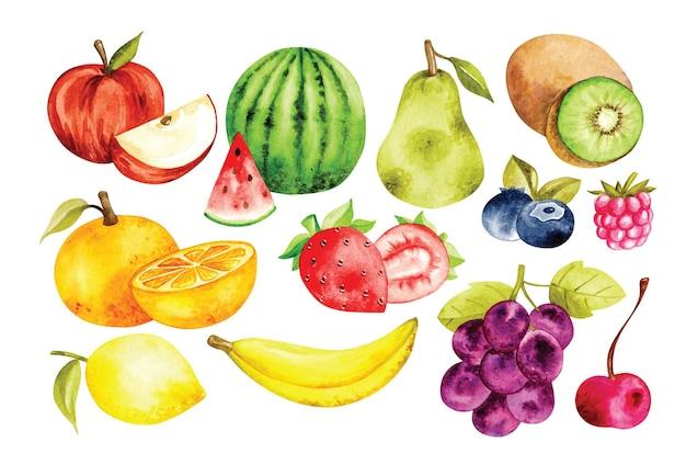 Conjunto de frutas em estilo aquarela