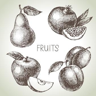 Conjunto de frutas esboço desenhado de mão. alimentos ecológicos. ilustração
