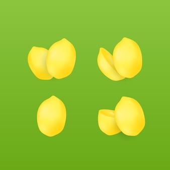 Conjunto de frutas etrog realistas para um design de sukkot feliz