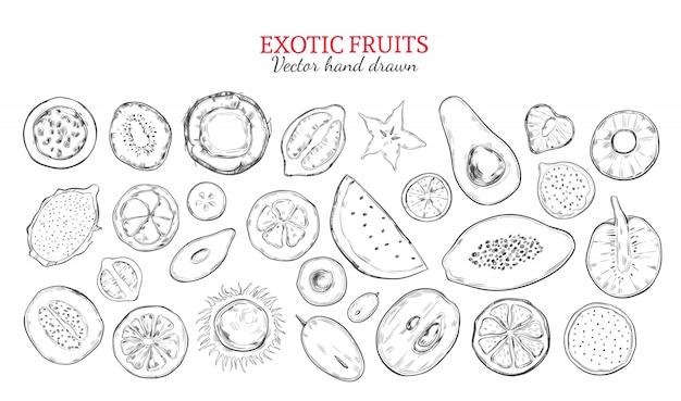 Conjunto de frutas exóticas e frutas tropicais