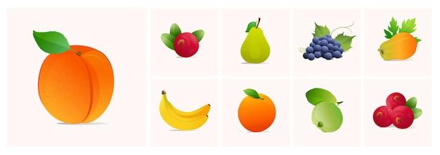 Conjunto de frutas ilustrações vetoriais de estilo moderno