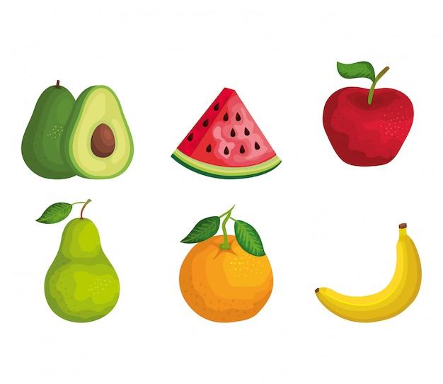 Conjunto de frutas orgânicas com nutrição e vitamina