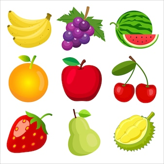 Conjunto de frutas para crianças aprendendo palavras e vocabulário.