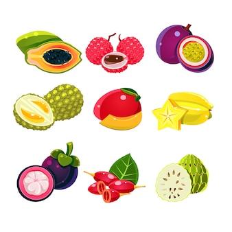 Conjunto de frutas tropicais exóticas coloridas