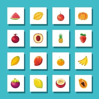 Conjunto de frutas tropicais exóticas frescas