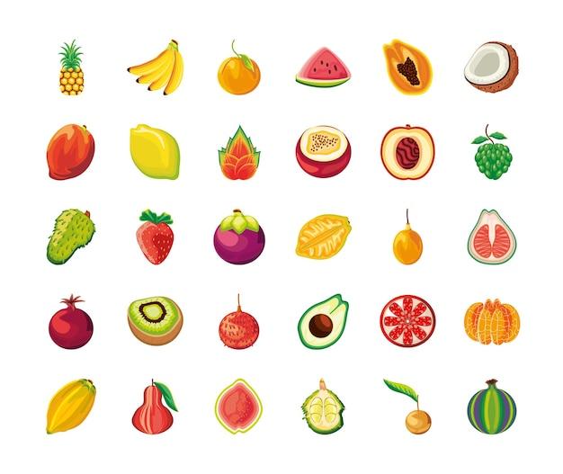 Conjunto de frutas tropicais