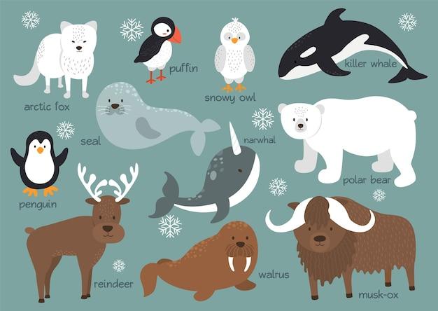 Conjunto de fundo de animais do ártico