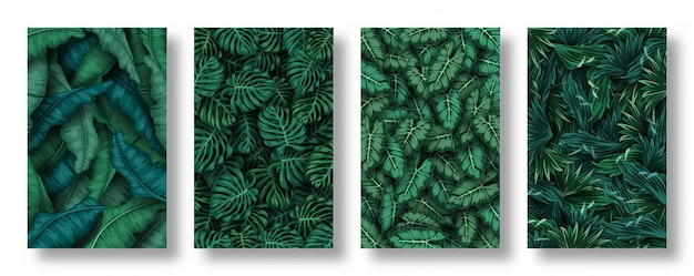 Conjunto de fundo de folhas tropicais