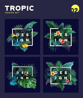 Conjunto de fundo tropical brilhante com plantas da selva.