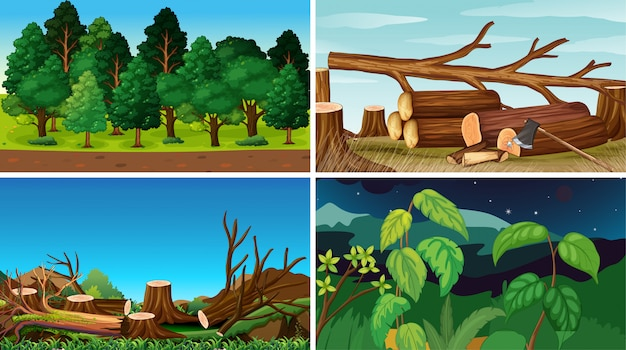 Conjunto de fundos da natureza