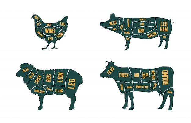Conjunto de gado de fazenda