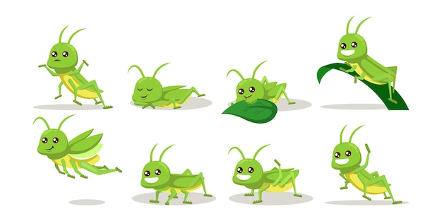 Conjunto de gafanhoto verde fofo inseto bug mascote ilustração.