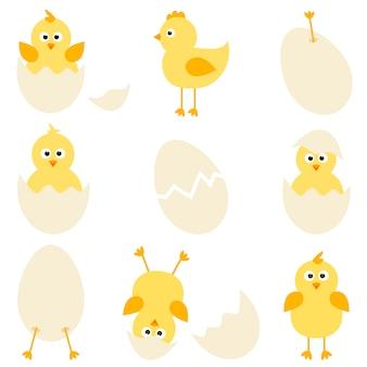 Conjunto de galinhas de desenho animado
