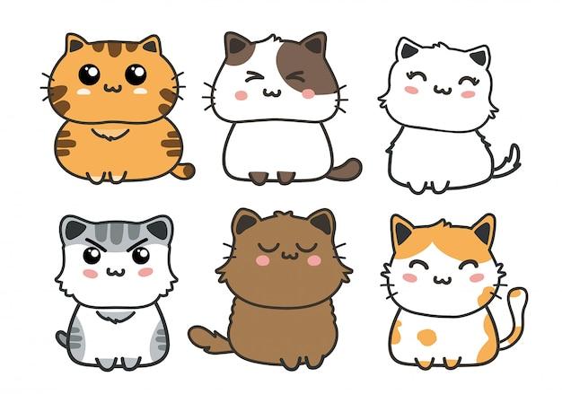Conjunto de gatos bonitos.