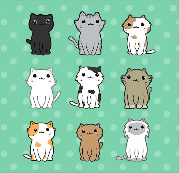 Conjunto de gatos bonitos