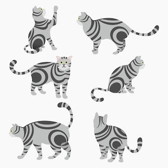 Conjunto de gatos cinzentos em diferentes posições