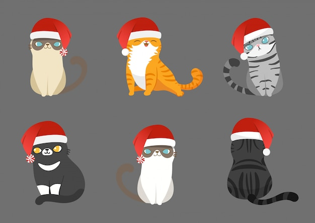Conjunto de gatos de papai noel em poses diferentes.