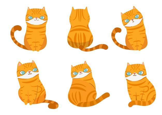 Conjunto de gatos listrados laranja em poses diferentes.