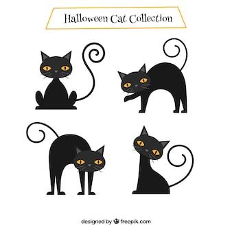 Conjunto de gatos pretos agradáveis