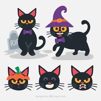 Conjunto de gatos pretos engraçados