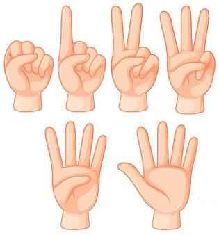 Conjunto de gesto com a mão