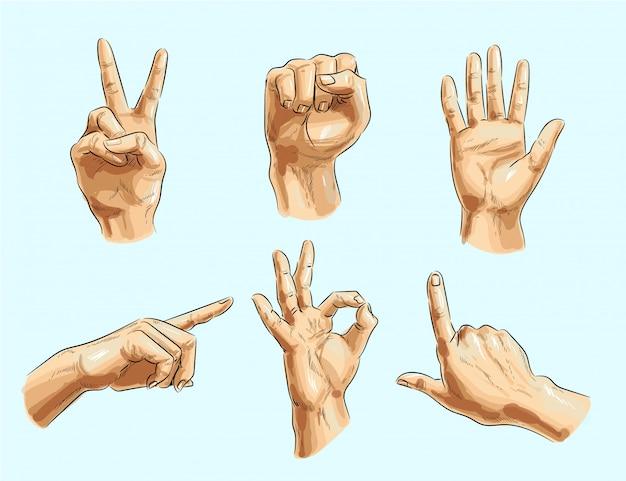 Conjunto de gesto de mão masculino de vetor