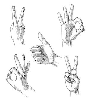 Conjunto de gestos manuais, ilustração desenhada à mão