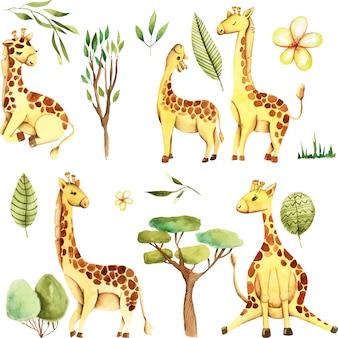 Conjunto de girafas bonitos em aquarela e plantas