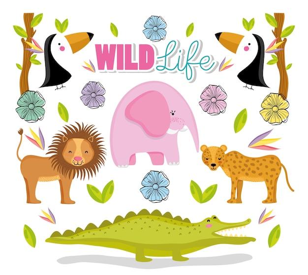 Conjunto de giros animais selvagens