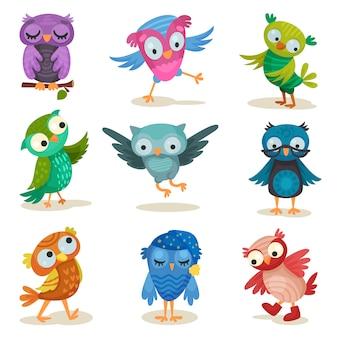 Conjunto de giros corujas coloridos, pássaros de coruja doce cartum ilustrações sobre um fundo branco