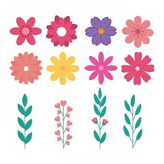 Conjunto de giros flores com ramos e folhas naturais
