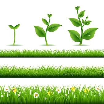 Conjunto de grama grande com plantas e ilustração de malha gradiente