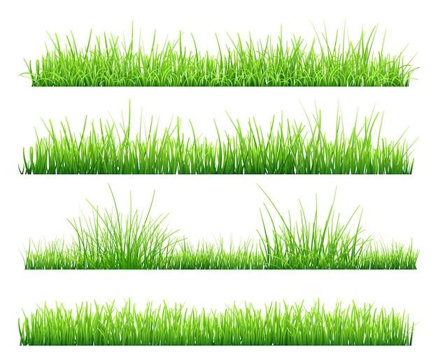 Conjunto de grama verde, isolado no fundo branco. ilustração