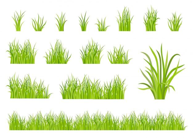 Conjunto de grama verde padrão