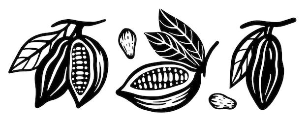 Conjunto de grãos de cacau. ilustração vetorial preto e branco