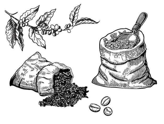 Conjunto de grãos de café na bolsa em estilo gráfico desenhados à mão