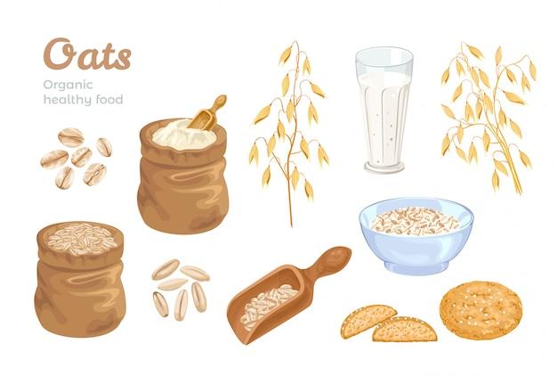 Conjunto de grãos, espigas e alimentos de aveia.
