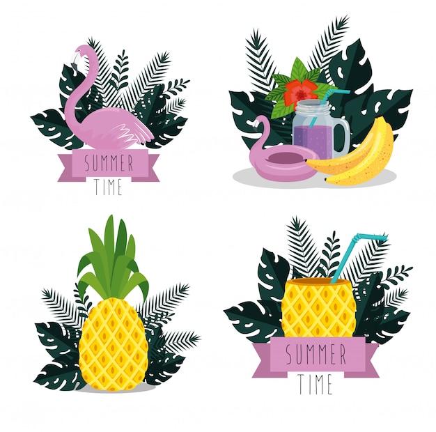 Conjunto de horário de verão com frutas tropicais e folhas de plantas